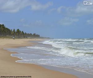 Rompicapo di Spiaggia di Imbassai, Brasile