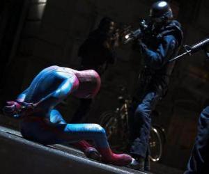 Rompicapo di Spider-Man, catturato dalla polizia