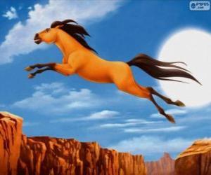 Rompicapo di Spirit, Cavallo selvaggio
