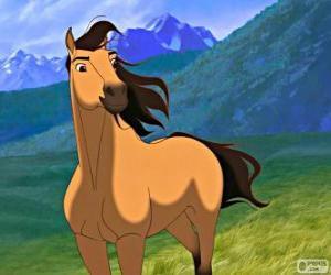 Rompicapo di Spirit, il cavallo selvaggio