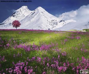 Rompicapo di Splendido scenario delle Alpi