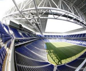 Rompicapo di Stadio di R.C.D. Espanyol - Estadio del RCD Espanyol -