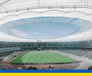 Rompicapo di Stadio Olimpico di Kiev (69.055)