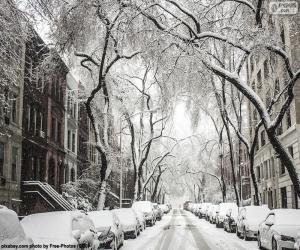 Rompicapo di Strada coperta di neve