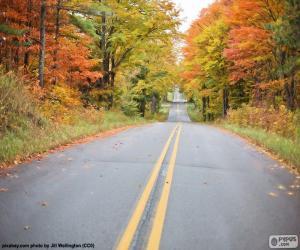Rompicapo di Strada di autunno