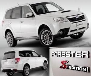 Rompicapo di Subaru Forester S Edition