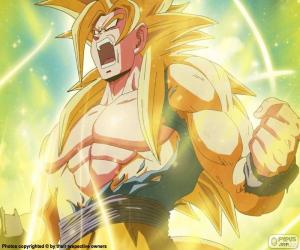 Rompicapo di Super Sayan, Dragon Ball