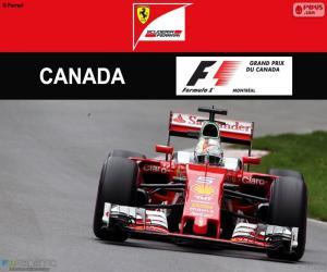 Rompicapo di S.Vettel, G.P del Canada 2016