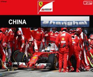 Rompicapo di S.Vettel Gran Premio Cina 2016