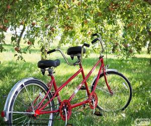 Rompicapo di Tandem di due ciclisti