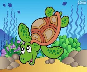 Rompicapo di Tartaruga marina
