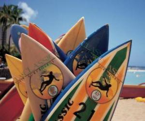 Rompicapo di Tavole di surf nella sabbia dalla spiaggia, nella stagione estiva