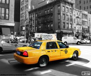 Rompicapo di Taxi di New York City
