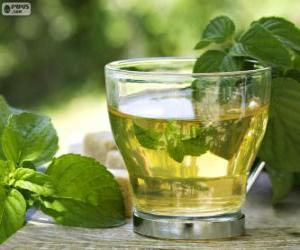Rompicapo di Tazza di tè verde