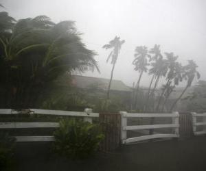 Rompicapo di Tempesta tropicale