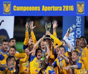 Rompicapo di Tigres UANL, Apertura 2016