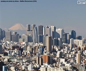 Rompicapo di Tokyo, Giappone