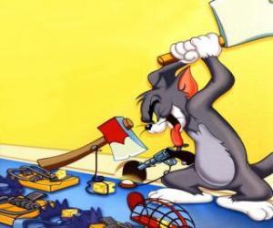 Rompicapo di Tom ha cercato di prendere il topo Jerry