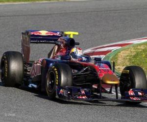 Rompicapo di Toro Rosso STR6 - 2011 -