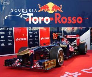 Rompicapo di Toro Rosso STR8 - 2013 -