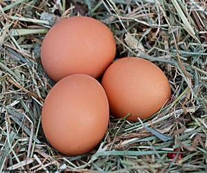 Rompicapo di Tre uova