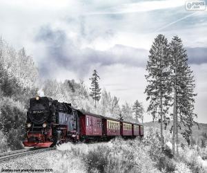 Rompicapo di Treno di inverno
