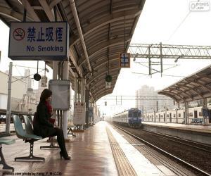 Rompicapo di Treno in partenza dalla stazione