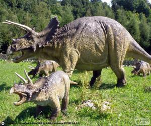 Rompicapo di Triceratopo