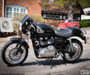 Rompicapo di Triumph Thruxton 900, 2004