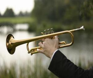 Rompicapo di Tromba, strumento musical aerofono