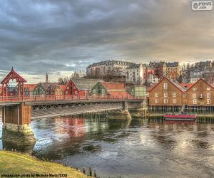 Rompicapo di Trondheim, Norvegia