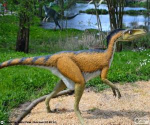 Rompicapo di Troodon