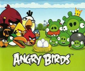 Rompicapo di Uccelli, uova e maiali verdi in Angry Birds