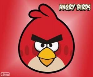 Rompicapo di Uccello Rosso (Red Bird)