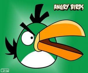 Rompicapo di Uccello Verde (Green Bird)