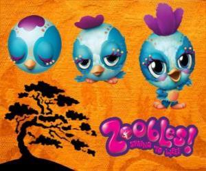 Rompicapo di Uccello Zooble da Petagonia
