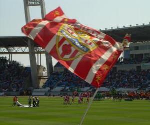 Rompicapo di U.D. Almería bandiera