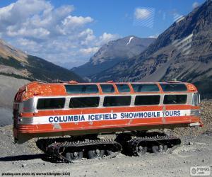 Rompicapo di Un autobus di neve