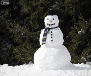 Rompicapo di Un elegante pupazzo di neve