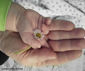 Rompicapo di Un fiore per la mamma