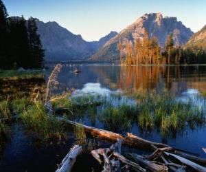 Rompicapo di Un lago con tronchi galleggianti in primo piano e di alta montagna sono