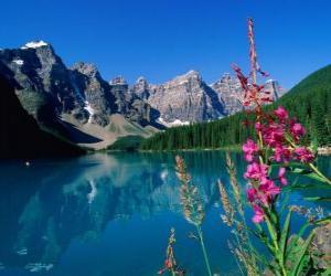 Rompicapo di Un lago con vegetazione e l'ufficio di alta montagna