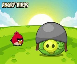 Rompicapo di Un piccolo uccello rosso accanto a un maiale con il casco