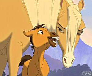 Rompicapo di Una scena tenera del film Spirit, Cavallo selvaggio
