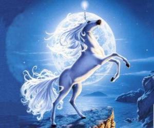 Rompicapo di Unicorn - Giovane cavallo con un corno a spirale