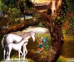 Rompicapo di Unicorni e fata