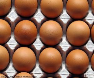 Rompicapo di Uova di gallina