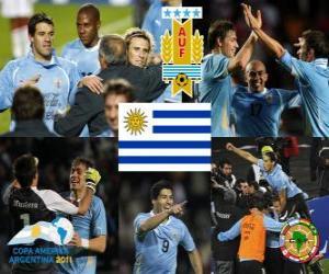Rompicapo di URU finalist, Copa America 2011