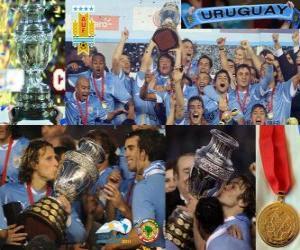 Rompicapo di Uruguay, Campione Copa America 2011