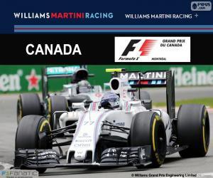 Rompicapo di V. Bottas, G.P del Canada 2016